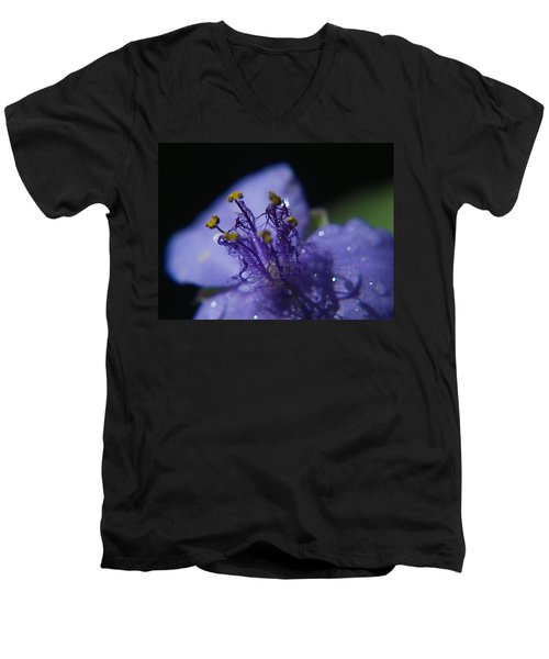 April Showers Men's V-Neck T-Shirt