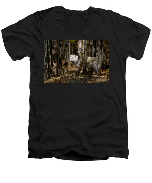Men's V-Neck T-Shirt featuring the photograph Arctic Wolf In Forest by Wolves Only