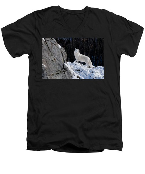 Men's V-Neck T-Shirt featuring the photograph Arctic Wolf On Rock Cliff by Wolves Only