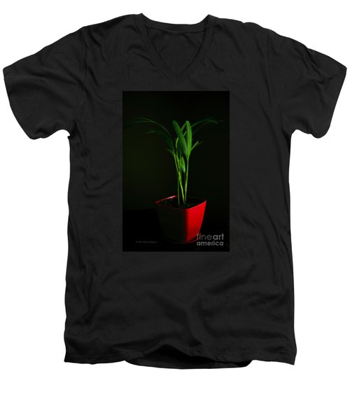 Areca Palm Men's V-Neck T-Shirt