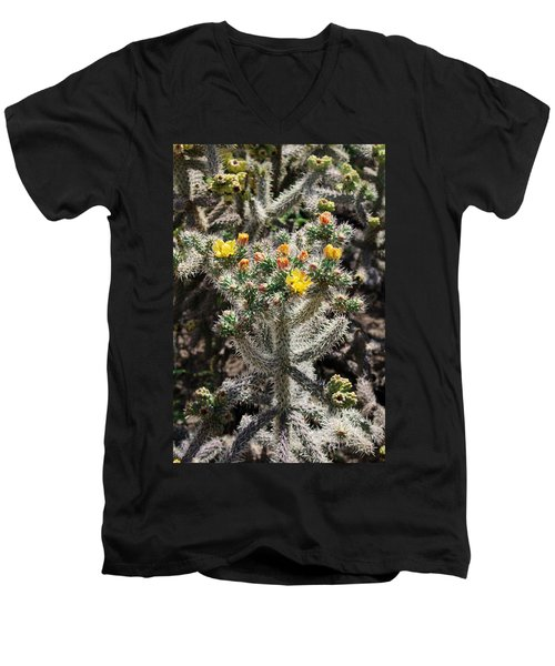 Arizona Cactus Men's V-Neck T-Shirt