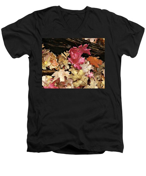 Arizona Fall Colors Men's V-Neck T-Shirt