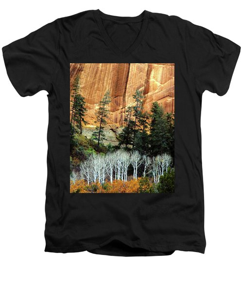 Arizona's Betatkin Aspens Men's V-Neck T-Shirt