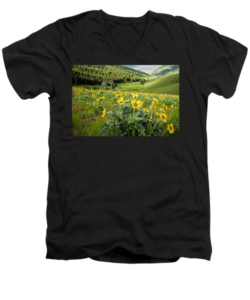 Men's V-Neck T-Shirt featuring the photograph Arrow Leaf Balsam Root by Jack Bell