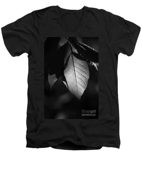 Ash Leaf Men's V-Neck T-Shirt