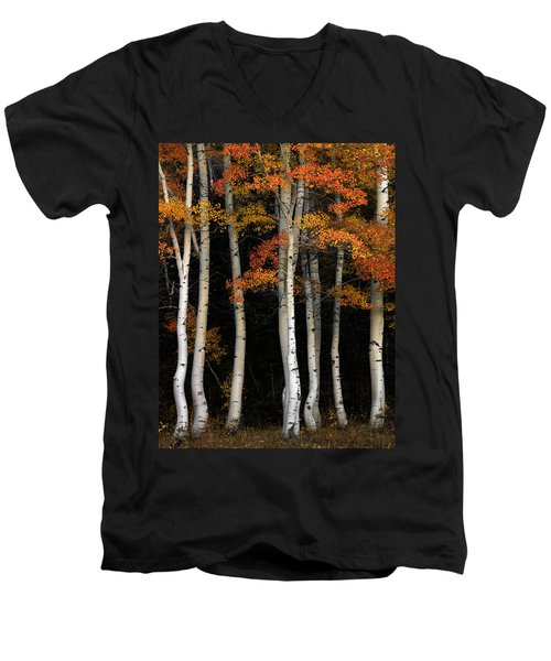 Aspen Contrast Men's V-Neck T-Shirt