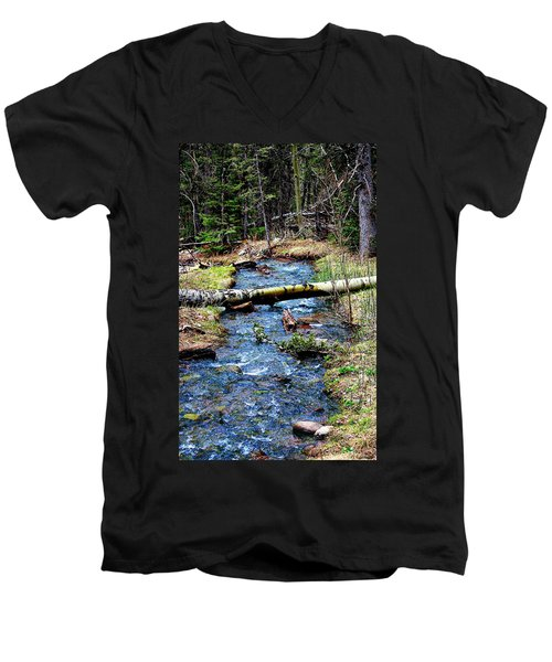 Men's V-Neck T-Shirt featuring the photograph Aspen Crossing Mountain Stream by Barbara Chichester