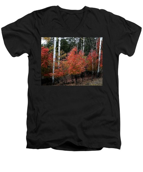 Aspen Glory Men's V-Neck T-Shirt
