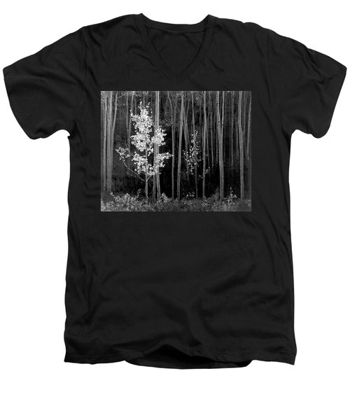Aspens Northern New Mexico Men's V-Neck T-Shirt by Ansel Adams
