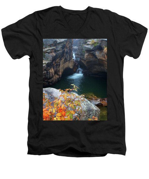 Autumn At The Grotto Men's V-Neck T-Shirt