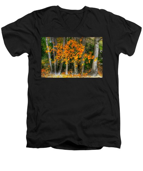 Autumn Breakout No.2 Men's V-Neck T-Shirt
