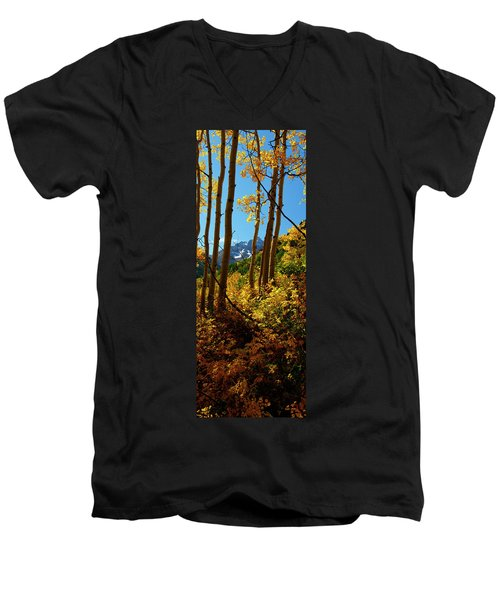Autumn Brilliance 2 Men's V-Neck T-Shirt