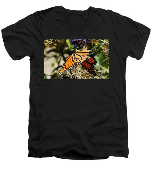 Autumn Butterfly Men's V-Neck T-Shirt