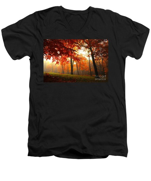 Men's V-Neck T-Shirt featuring the photograph Autumn Canopy by Terri Gostola