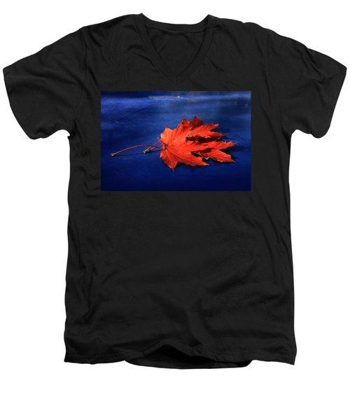 Autumn Fire Men's V-Neck T-Shirt