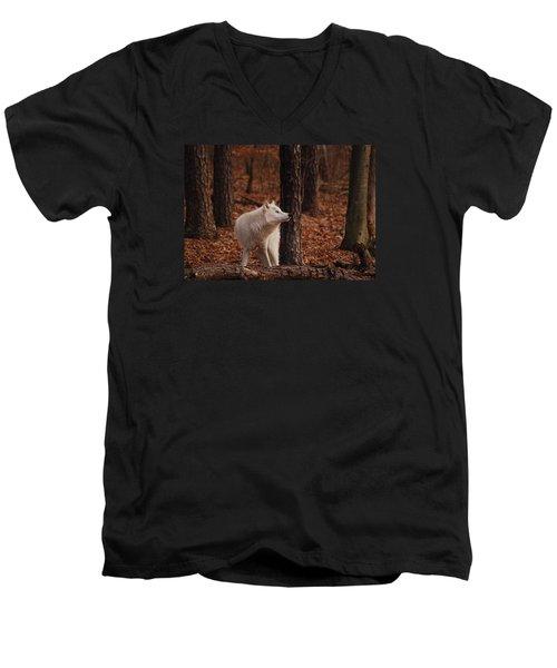 Autumn Gaze Men's V-Neck T-Shirt by Lori Tambakis