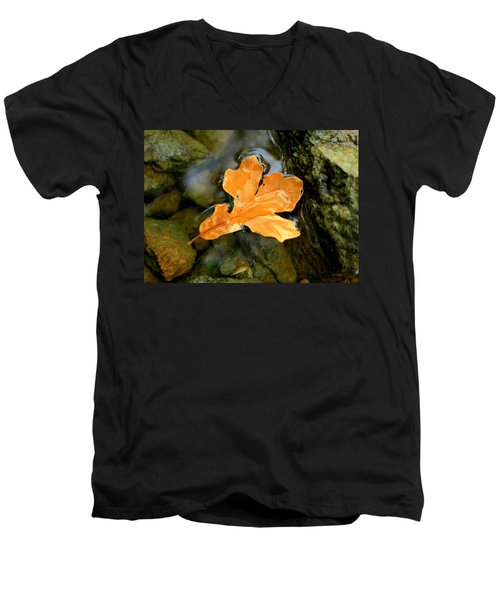 Autumn Gold Men's V-Neck T-Shirt