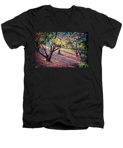 Autumn Grove Men's V-Neck T-Shirt