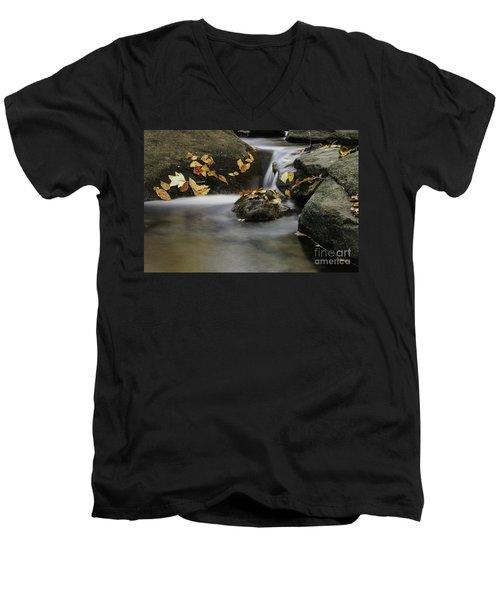 Autumn In Hackelbarney II Men's V-Neck T-Shirt