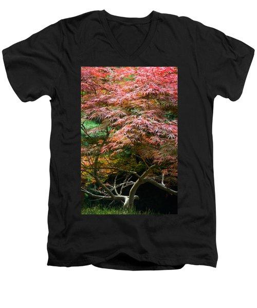 Autumn Is Here Men's V-Neck T-Shirt