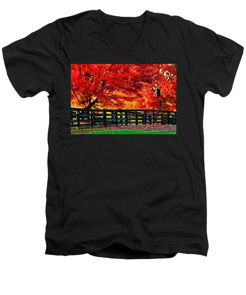 Autumn Kentucky Maples Men's V-Neck T-Shirt