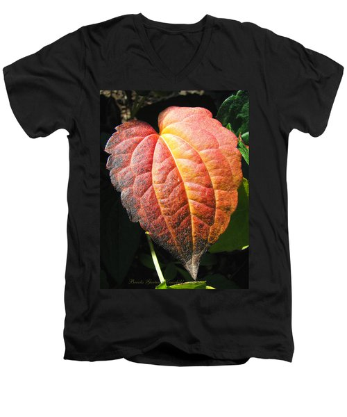 Men's V-Neck T-Shirt featuring the photograph Autumn Leaf Macro by Brooks Garten Hauschild