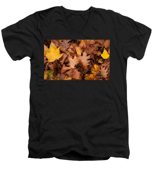 Men's V-Neck T-Shirt featuring the photograph Autumn Leaves by Matt Malloy