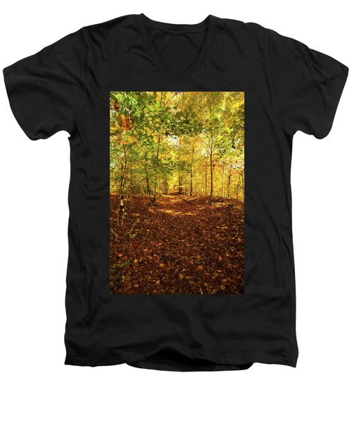 Autumn Leaves Pathway  Men's V-Neck T-Shirt by Jerry Cowart