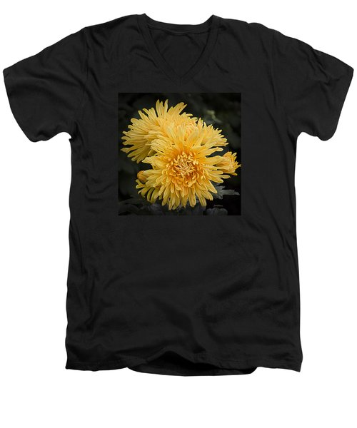 Autumn Mums Men's V-Neck T-Shirt by Julie Palencia