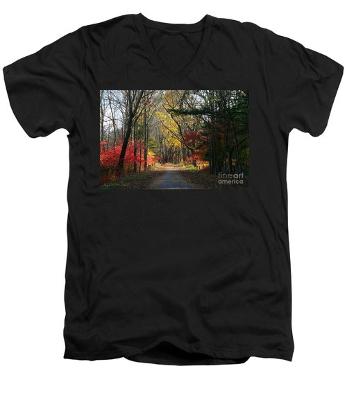 Autumn Paths    No.2 Men's V-Neck T-Shirt