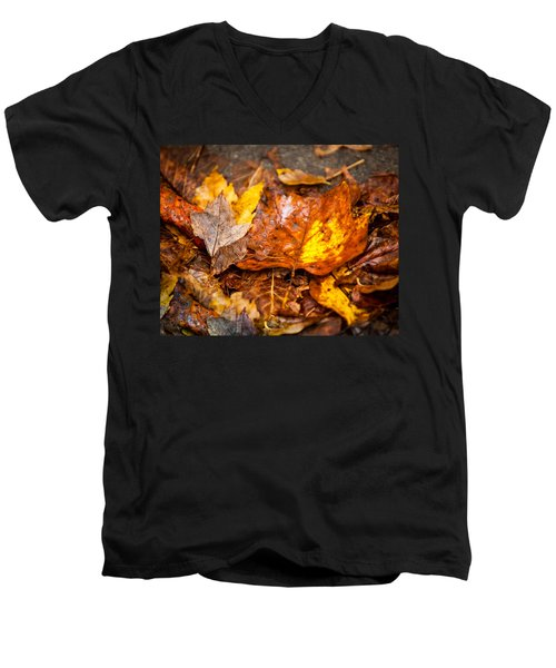 Autumn Pile Men's V-Neck T-Shirt