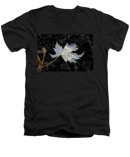 Autumn Rain Men's V-Neck T-Shirt by Katie Wing Vigil