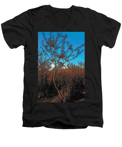 Autumn Men's V-Neck T-Shirt by Terry Reynoldson