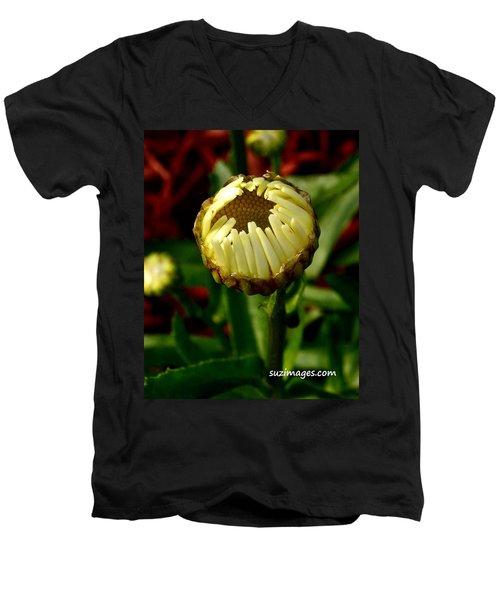 Baby Daisy Men's V-Neck T-Shirt