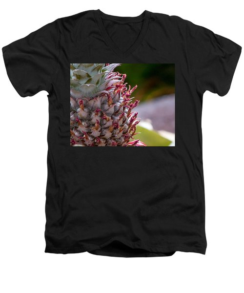 Baby White Pineapple Men's V-Neck T-Shirt by Denise Bird