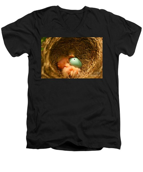 Baby Robins2 Men's V-Neck T-Shirt