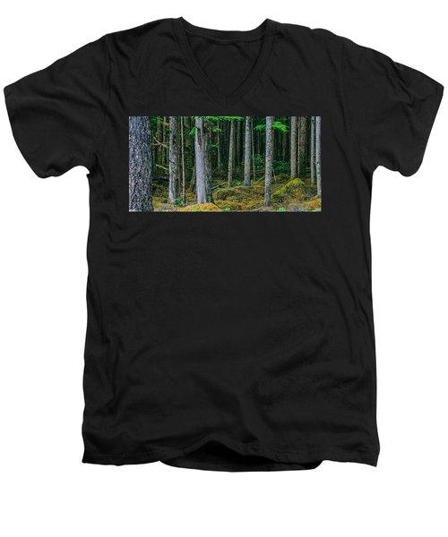 Inside View Backroad Forest Men's V-Neck T-Shirt