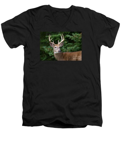 Backward Glance Men's V-Neck T-Shirt