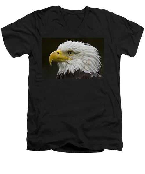 Bald Eagle - 7 Men's V-Neck T-Shirt