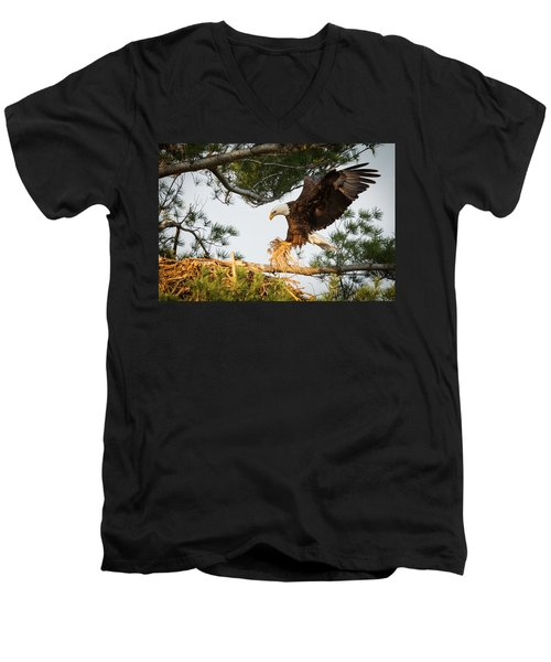 Bald Eagle Building Nest Men's V-Neck T-Shirt