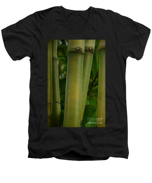 Men's V-Neck T-Shirt featuring the photograph Bamboo II by Robert Meanor