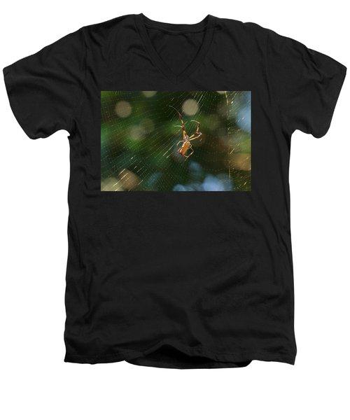 Banana Spider In Web Men's V-Neck T-Shirt