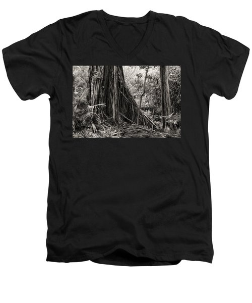 Strangler Fig And Cypress Tree Men's V-Neck T-Shirt