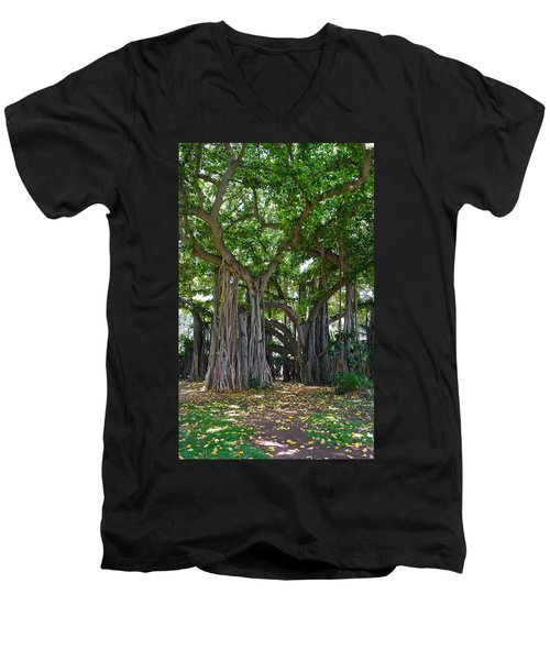 Banyan Tree At Honolulu Zoo Men's V-Neck T-Shirt by Michele Myers