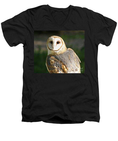 Barn Owl In Bright Sun Men's V-Neck T-Shirt