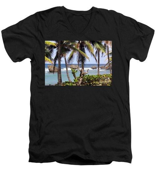 Bathsheba No7 Men's V-Neck T-Shirt