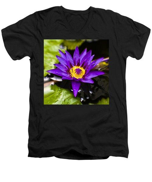 Bayou Beauty Men's V-Neck T-Shirt by Scott Pellegrin