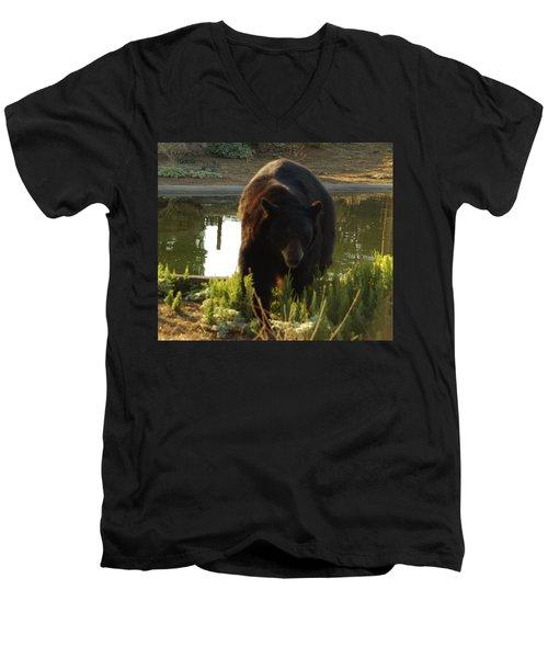 Bear 1 Men's V-Neck T-Shirt