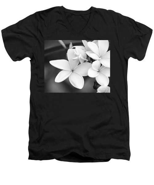 Beautiful Plumeria In Black And White Men's V-Neck T-Shirt