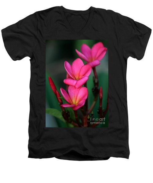 Beautiful Red Plumeria Men's V-Neck T-Shirt